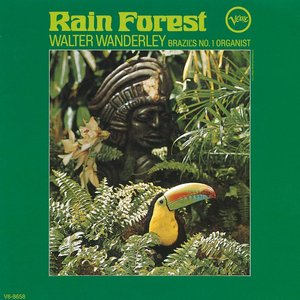 Image for 'Rain Forest (Reissue)'