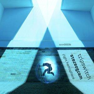Image for 'Stereogram (right hemisphere)'