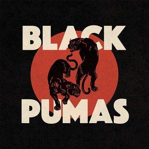 Image for 'Black Pumas'
