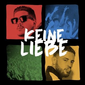 Image for 'Keine Liebe'
