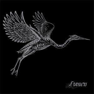 Image for 'Heron'