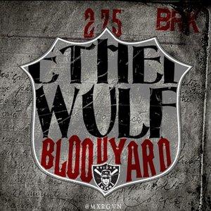Image for 'Bloodyard (unreleased)'