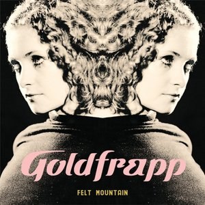 Image for 'Felt Mountain'