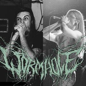 Изображение для 'Wormhole'