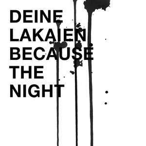 Image for 'Because The Night'