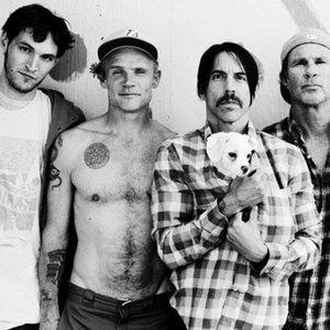 Bild für 'Red Hot Chili Peppers'