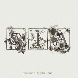 Immagine per 'Colour the Small One'