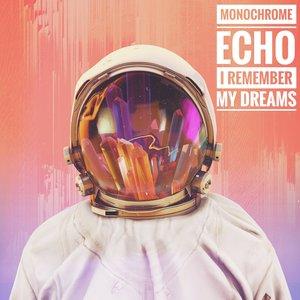 Image for 'Monochrome Echo'