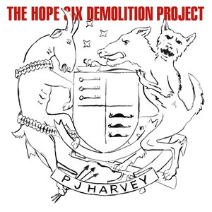 Image for 'The Hope Six Demolition Project'
