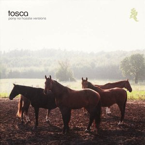 Image pour 'Pony No Hassle Versions'