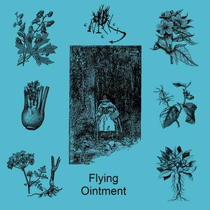 Image for 'Old Nick - Flying Ointment'