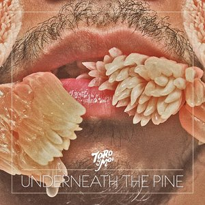 Image for 'Underneath the Pine'