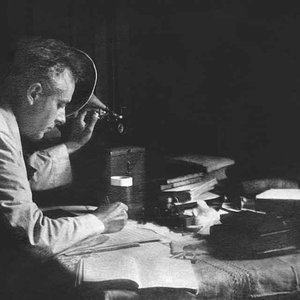 Image for 'Béla Bartók'