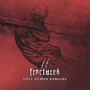 Bild für 'Only Human Remains'