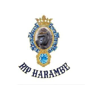 Image for 'RIP Harambe'