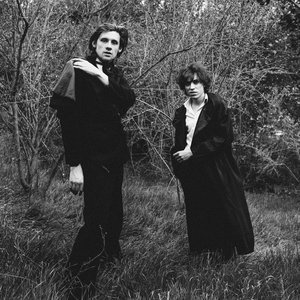 Image for 'Foxygen'