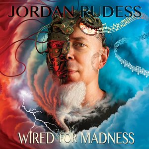 Image for 'Wired For Madness'