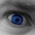 Avatar for ShaneRichmond