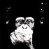 Avatar de Chimpz