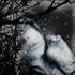 Avatar de NoCTuRNa_DReaMS