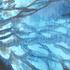 Avatar for whospikedmyv8