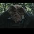 Avatar for phantom_ganon