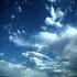 Avatar for rainy-sunshine
