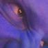Avatar für guzerat