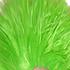Avatar for michaelqtodd