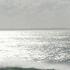 Avatar de Atlantide