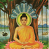 Avatar for Sotapanna
