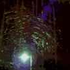 Avatar for lightbody