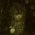 Avatar for HedgehogInMist