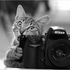 Аватар для Vendigo