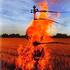 Avatar for burningcello