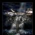 Avatar for Celebloth