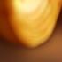 Avatar de arbeemonkey