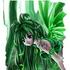 Avatar for fynnichen