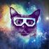 Аватар для raccoonza