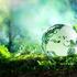 Avatar for andredunn69