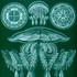 Avatar for Cistic_Oken