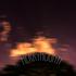 Avatar di merrymount