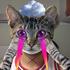 Avatar for david_emmanuel