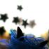 Аватар для Novecento93s