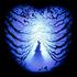 Avatar for Metalygon