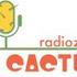 Avatar for ElCactusRadiozi