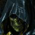 Avatar for Kanon_Testament