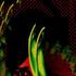 Avatar for Skadi_85