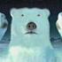 Avatar for PolarBearCa