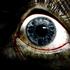 Аватар для ScreamerQ